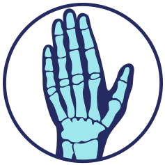 Blue and teal icon of hand and wrist bones on transparent background